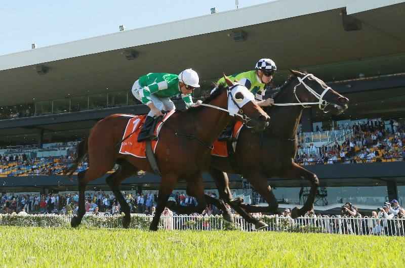 the oaks horse race 2020