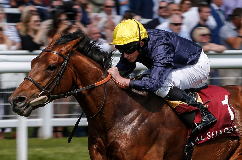 Hardwicke stakes betting odds item refunded vulcan betting