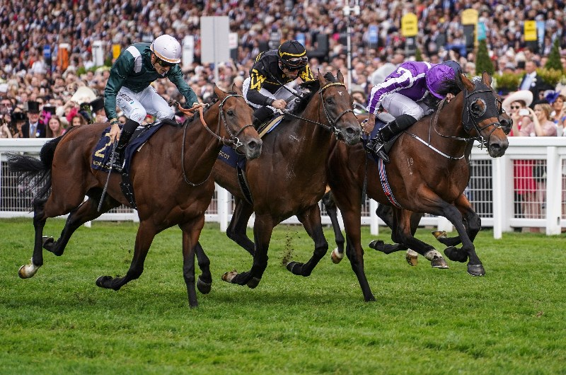2018 July Cup Tips Amp Betting Predictions Merchant Navy To
