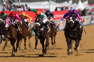 Durban july runners and betting trends donk betting odds