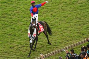 Durban july runners and betting trends champions cup usa sports betting