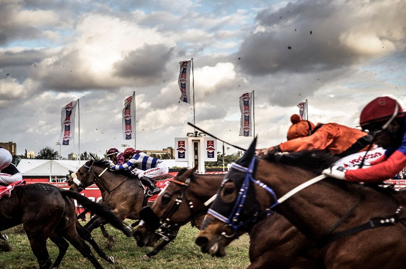 durban july runners and betting tips