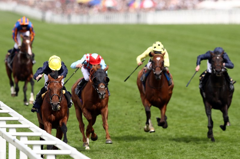 King george and queen elizabeth stakes 2021 betting tips live sports betting uk