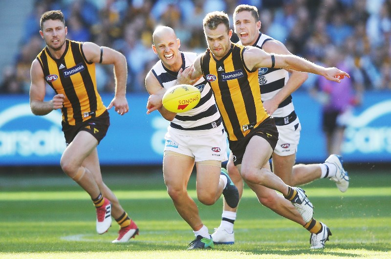 Geelong v hawthorn betting preview bitcoins images google