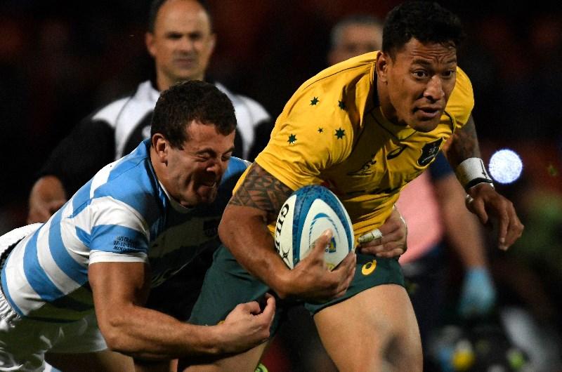 Australia vs Argentina Preview & Betting Tips, Wallabies