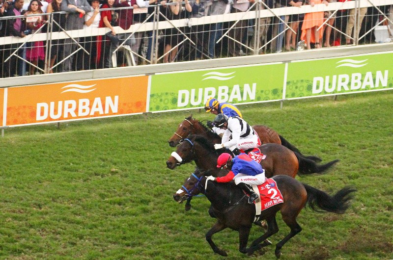 Durban july runners and betting on sports binary options watchdog gold digger