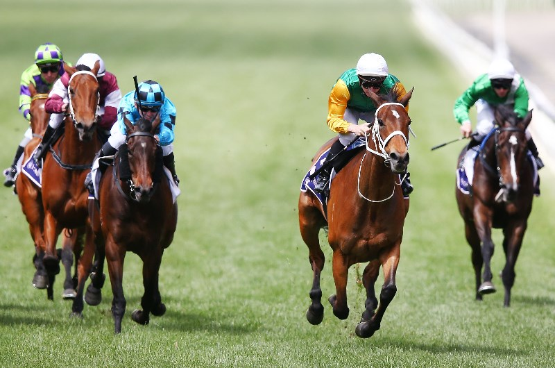 Empire Rose Stakes
