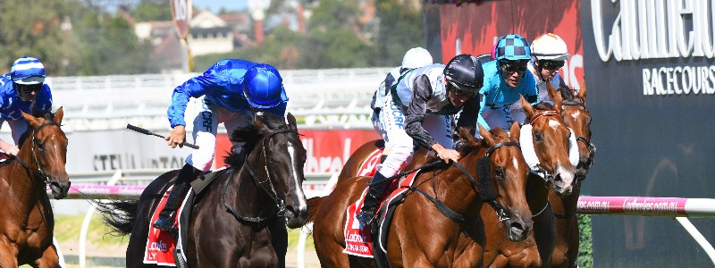 Blue Diamond Stakes