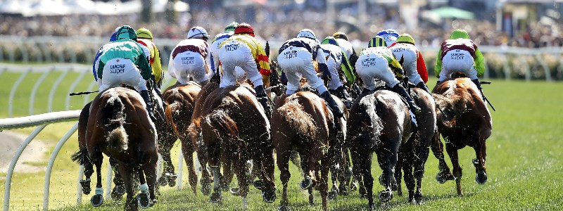 Cantala Stakes