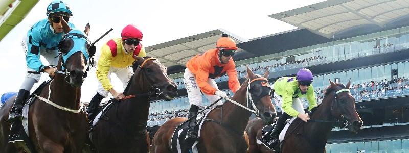 Surround Stakes