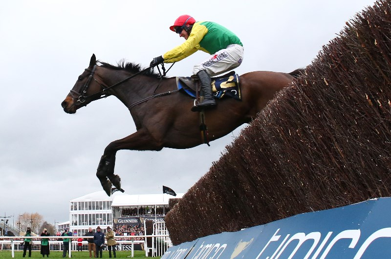 How to bet on the Cheltenham Gold Cup