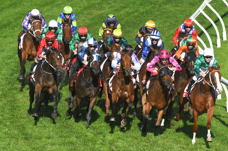 Caulfield races sports betting poker 17 startups to bet your career on demand