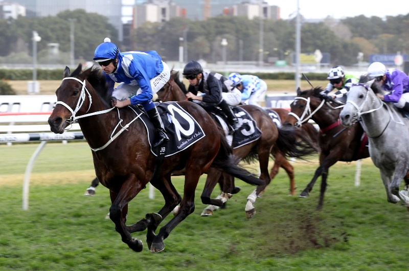Winx Stakes