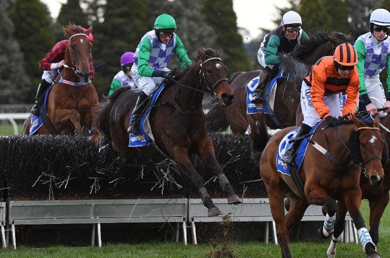Best Grand National Bets