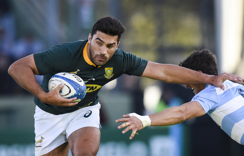 Springbok rugby