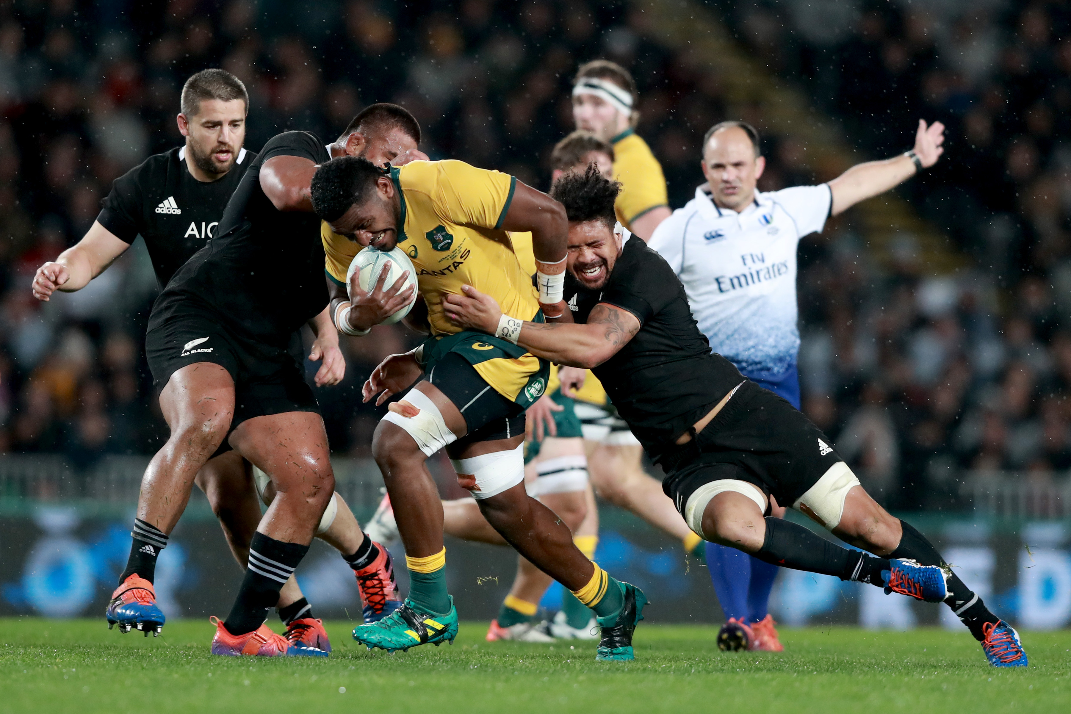australia vs all blacks rugby 2019
