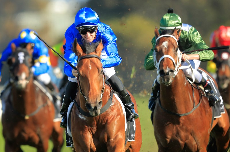 Bivouac to stake claim as the best colt