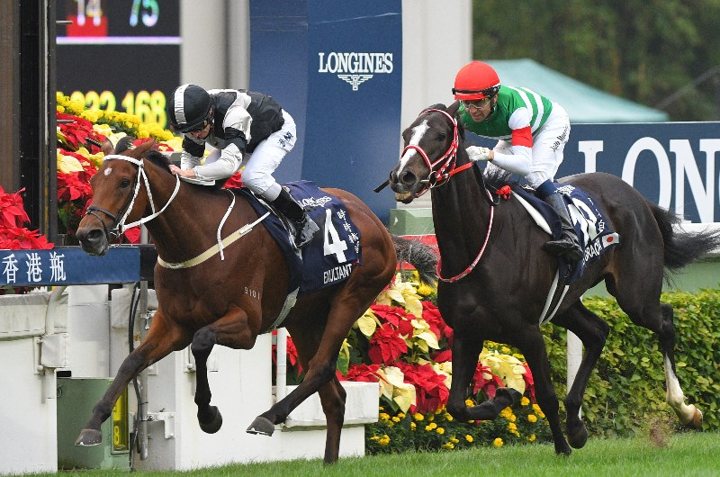 Cox plate tipsters betting fortuna sports betting