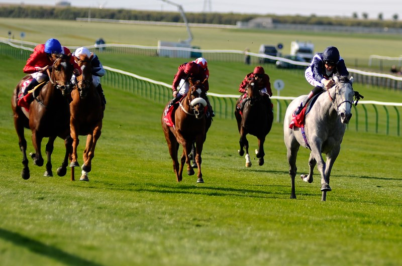 Sun Chariot Stakes
