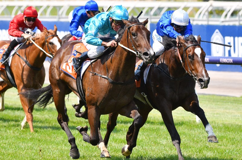 1000 guineas betting 2021 tips for a happy soccer betting 1/2 goal