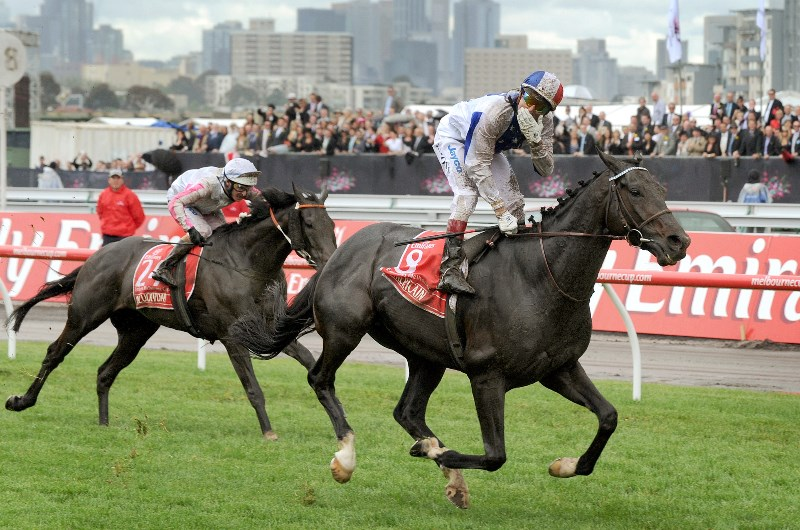 americain melbourne cup