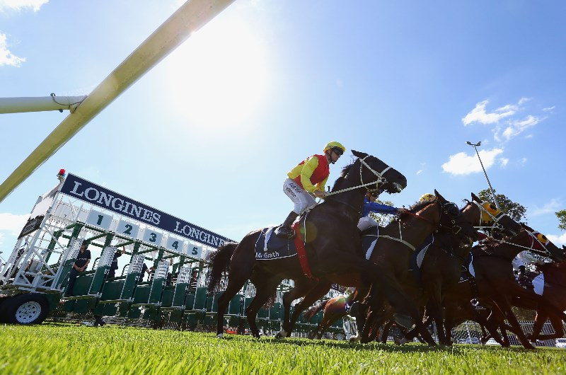 sky high stakes horse racing