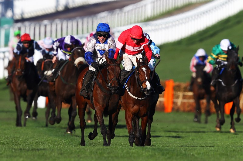 Olbg mares hurdle betting online binary options xls file
