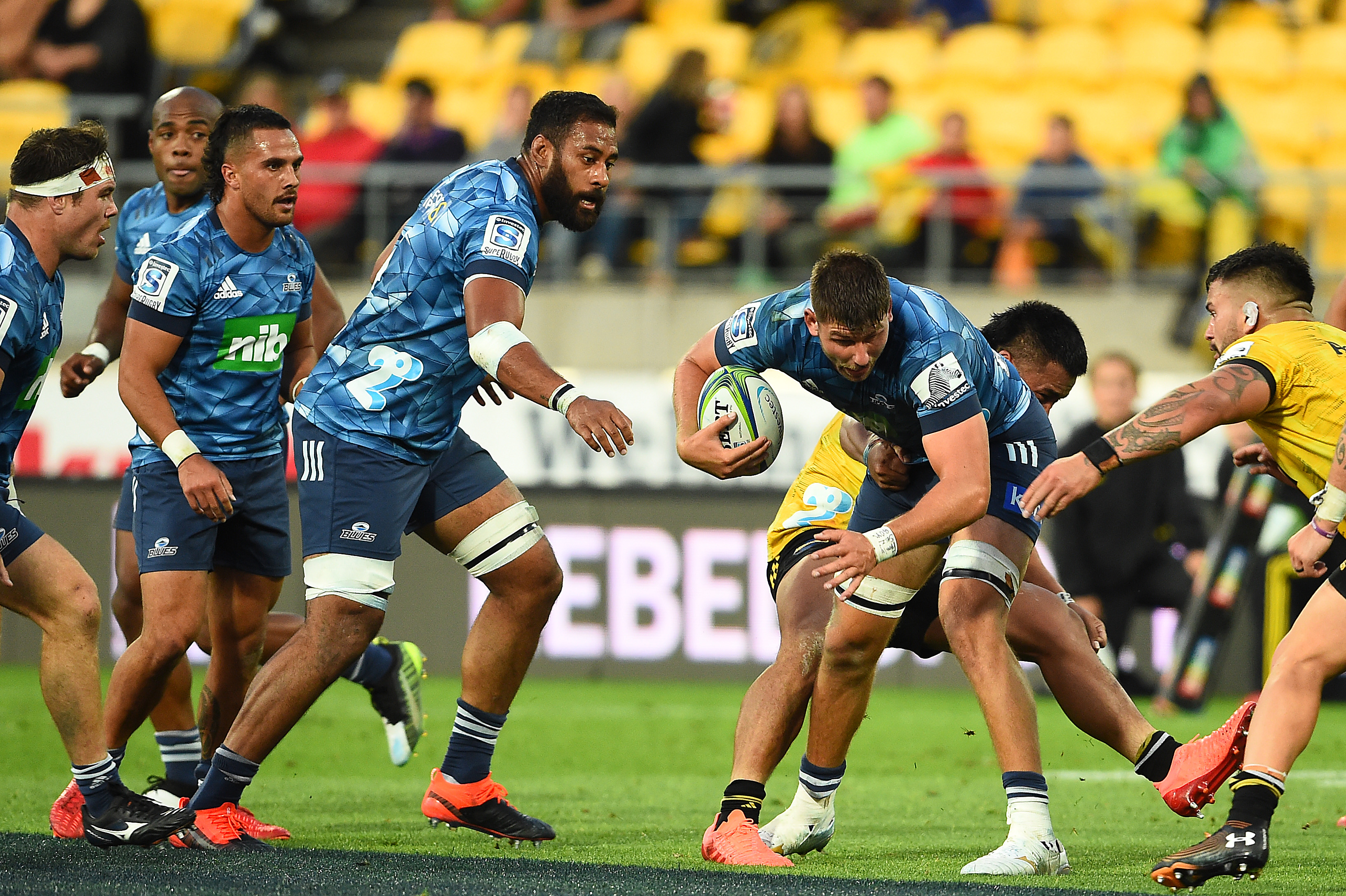 auckland blues rugby