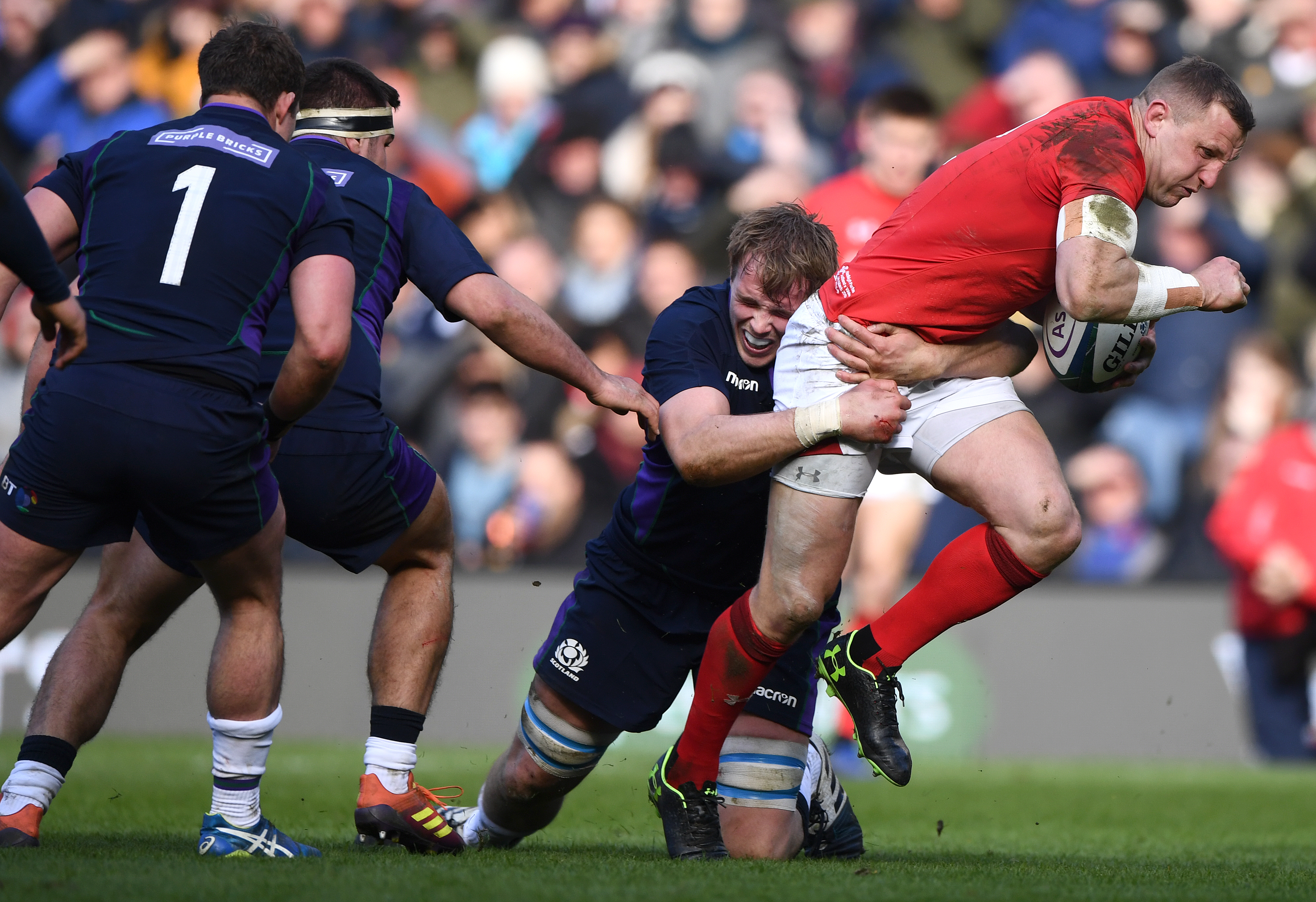 wales rugby vs scotland