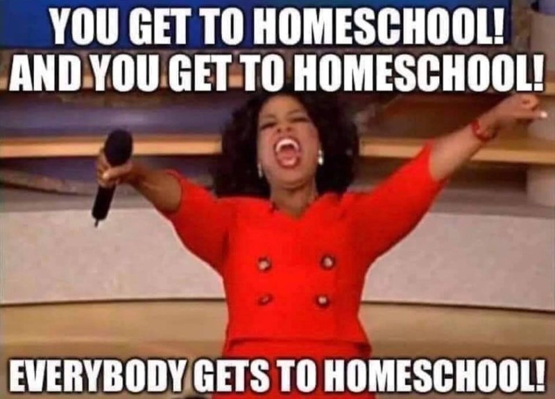Coronavirus Homeschooling memes - Parents, how are you coping?