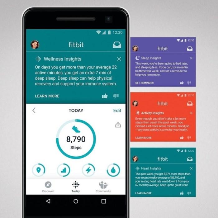 Fitbit Premium Insights