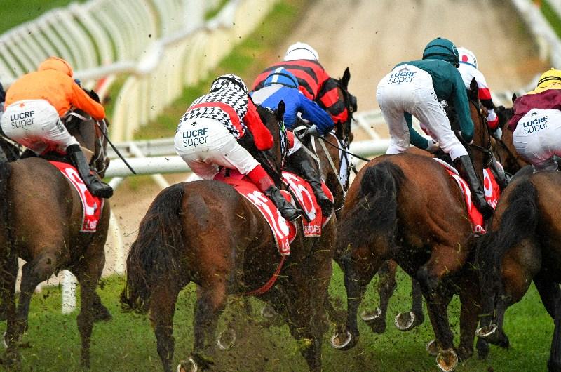 Caulfield races sports betting poker laid off betting