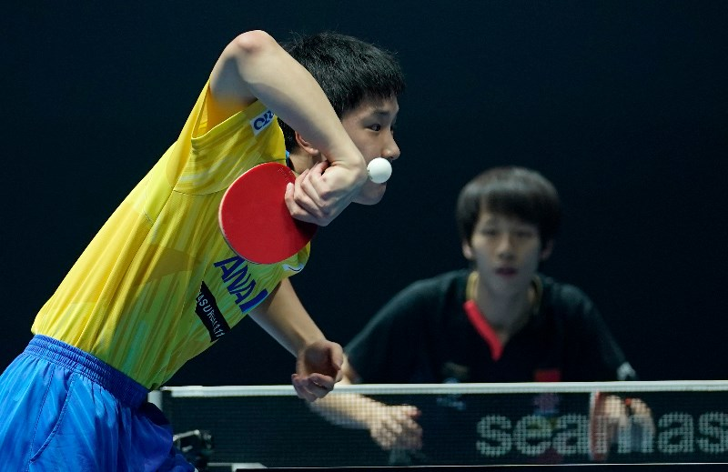 Betting on table tennis convert dog coins to bitcoins price
