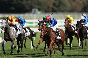 chipping norton stakes bettingadvice