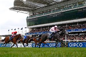 Betting 2000 guineas 2021 limited risk binary options