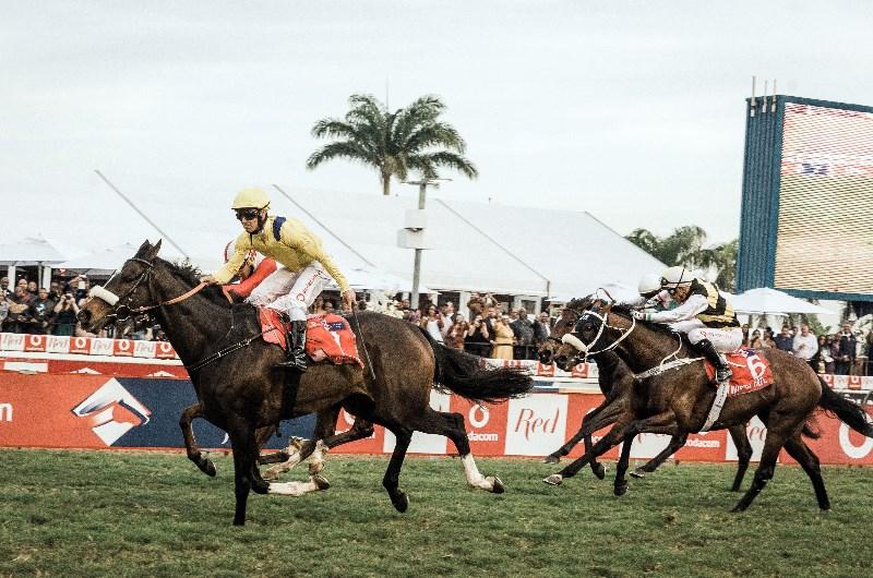 Durban july horses 2021 betting odds online sports betting legal 2021 calendar
