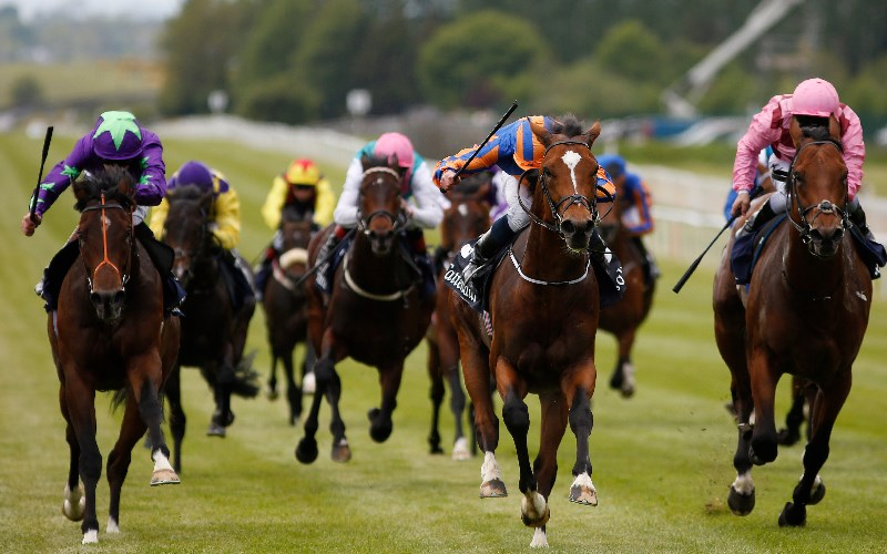 Irish 2000 guineas betting 2021 ford online betting usa mastercard credit