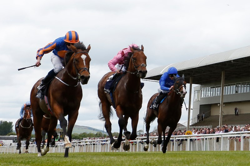 Irish Derby 2020 Curragh | Official Curragh Race & Stay