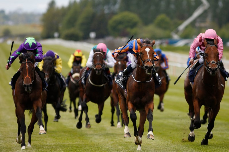 Irish 1000 guineas 2021 betting websites sports betting winners