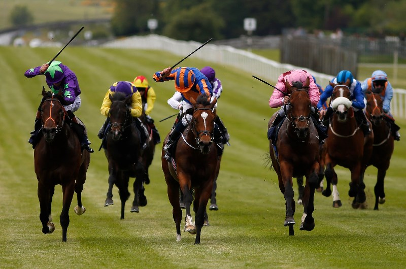 Irish 2000 guineas betting 2021 nissan 2020 binary options