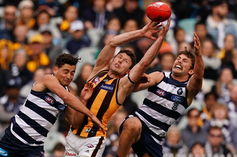 Geelong v hawthorn betting preview multi accounting matched betting usa