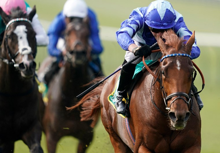Craven stakes 2021 betting websites 49ers seahawks betting line 2021