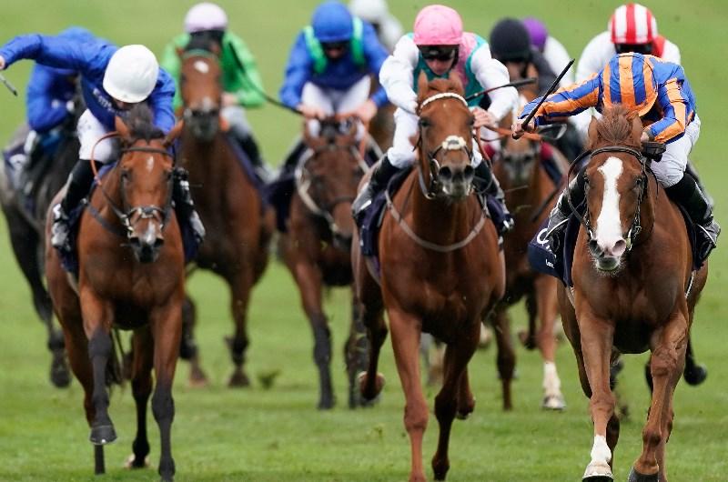 Coronation stakes 2021 betting advice cornet vs bouchard betting expert tips