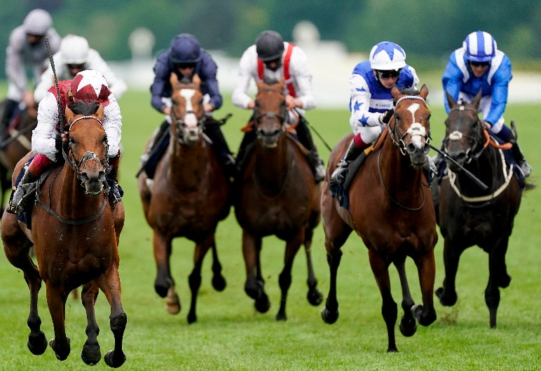 hardwicke stakes