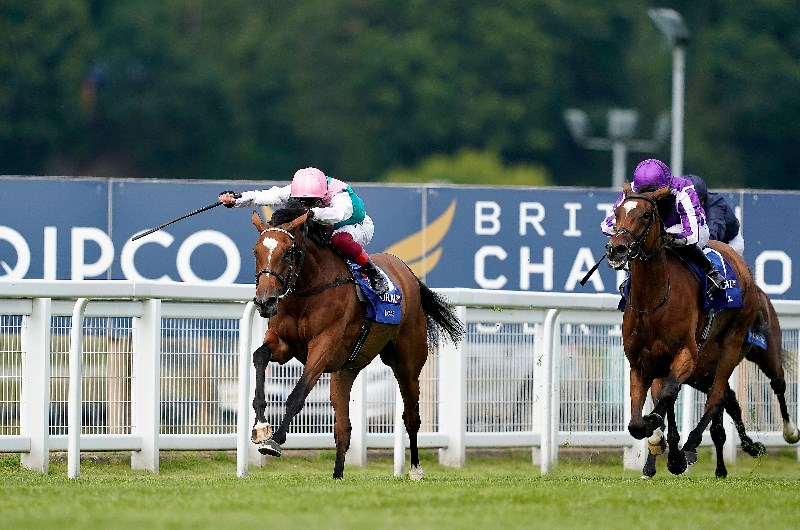 Coral eclipse stakes 2021 betting odds zoantharia corals betting