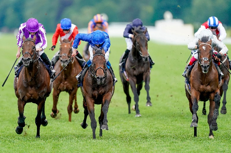 st james's palace stakes