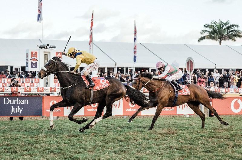 Greyville horse racing betting strategy lebenswerkstatt dreieich christian bettinghausen