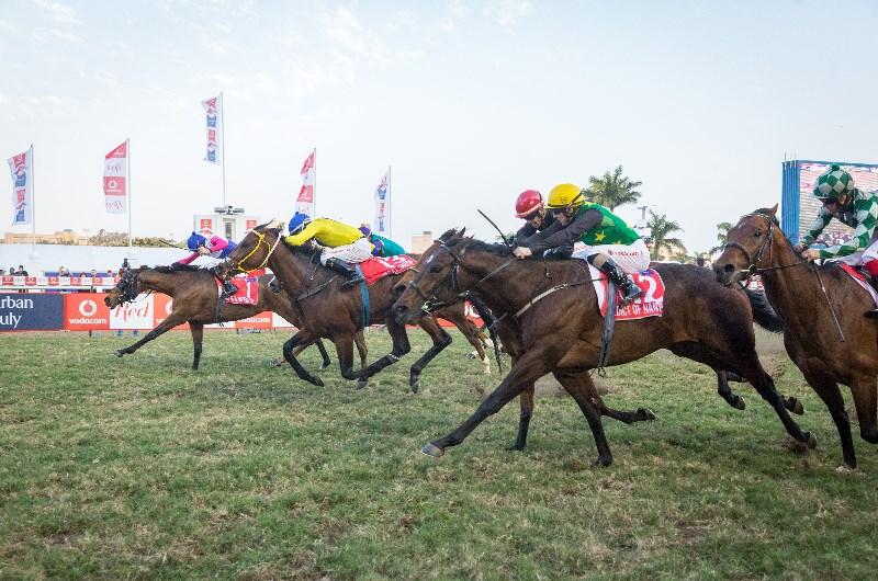 Greyville racecourse durban july betting mini moe csgo betting