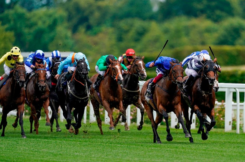 queen anne stakes