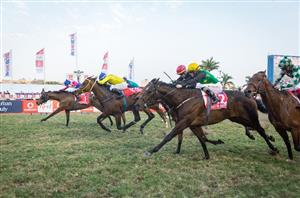 Horse racing betting south africa fansbetting withdraw from a case